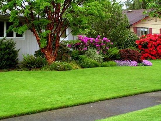 Зеленая лужайка или гравий? Как оформить территорию возле дома