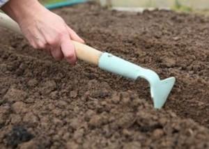 Шаг 4. Полив и рыхление почвы