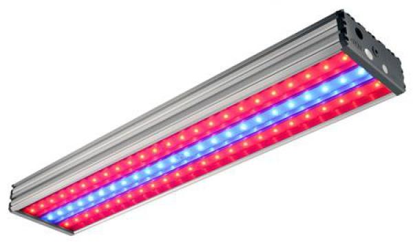 В светодиодной лампе можно соединить два эффективных спектра