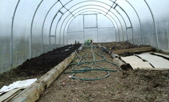 Готовим теплицу к посадке растений