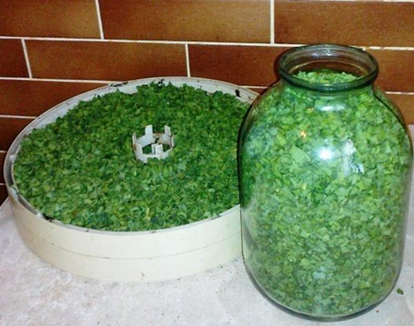 Зеленый лук очень полезен