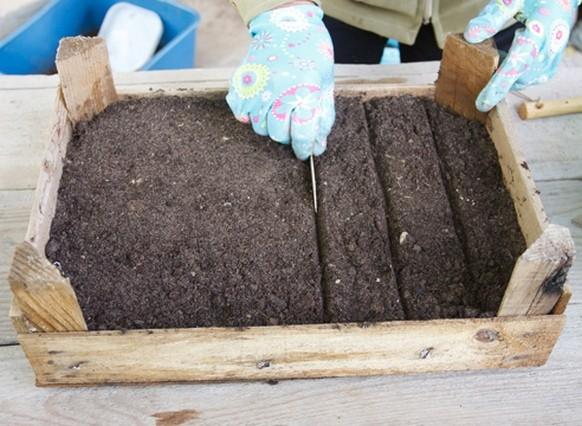 Нарезание бороздок для посева