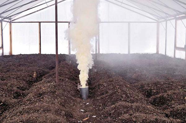 Обработка теплицы газом