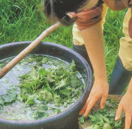 Приготовление удобрения из крапивы, окопника, ромашки