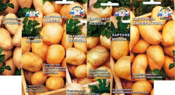 Ранние сорта картофеля