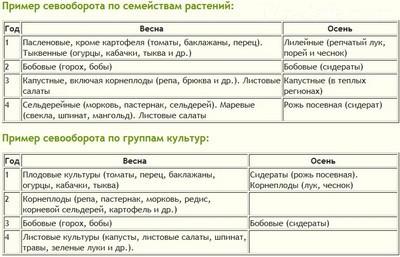 Сводная таблица севооборота овощных культур