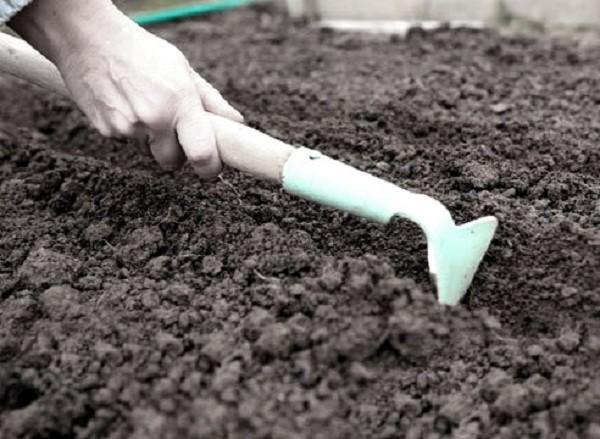Формирование борозд для посева