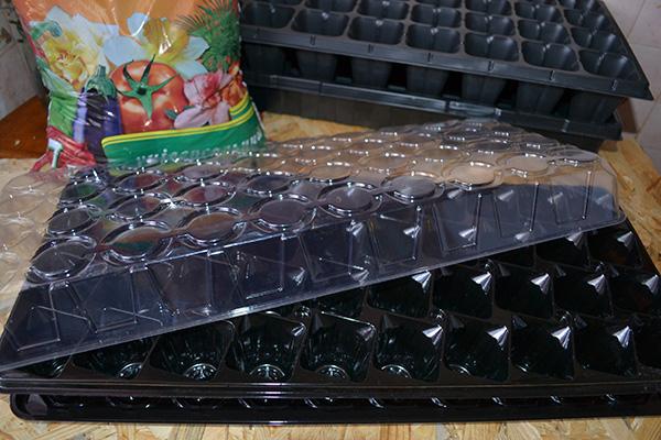 Кассеты с прозрачной крышкой для посадки лобелии