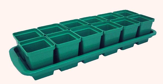 в-чём-выращивать-рассаду-помидоров