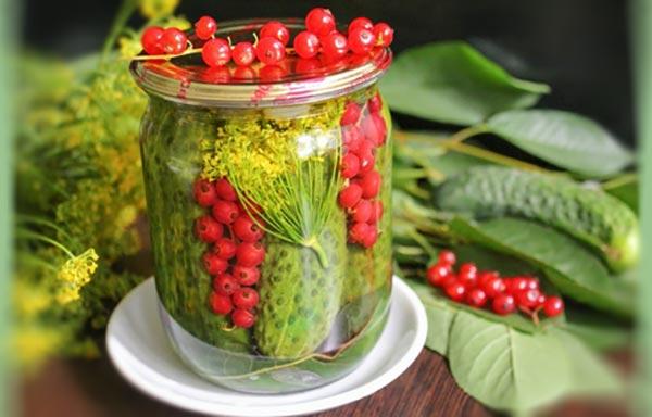 заготовка-овощей-с-красной-смородиной