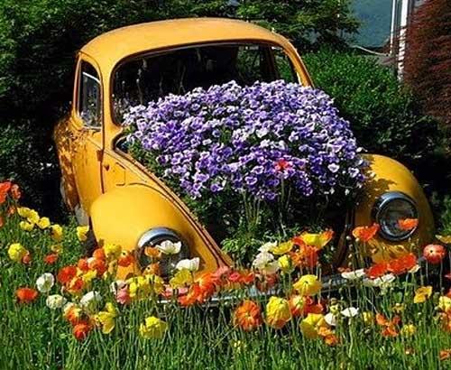 необычные идеи для цветников своими руками