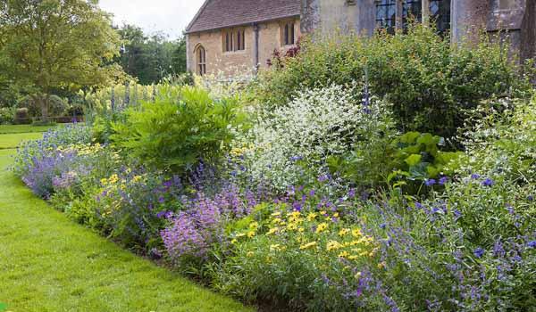 названия цветов для клумбы цветущей все лето