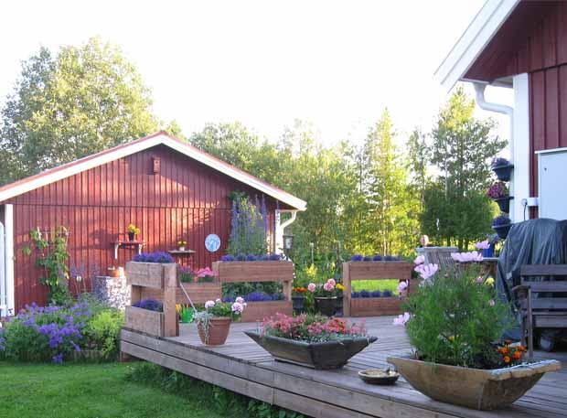 цветник возле дома фото