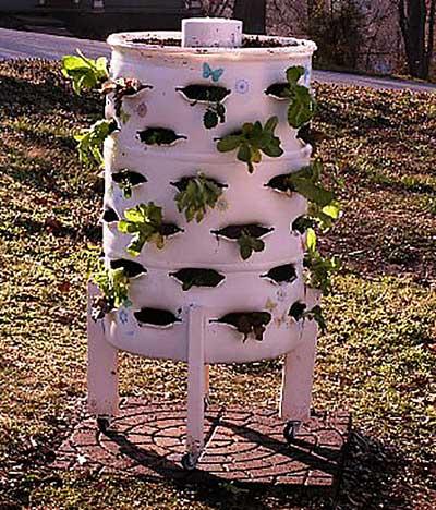 выращивание-клубники-в-колоннах