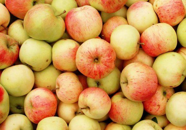 Яблоки могут отличаться по вкусу от первоначального яблока, из которого были вынуты семена