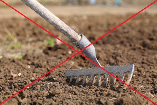 Не рыхлите почву