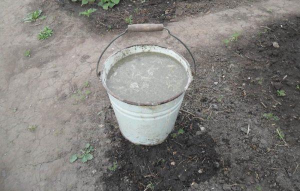 Жидкое удобрение для рододендрона