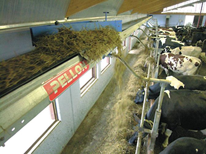 Автоматизированное кормление скота