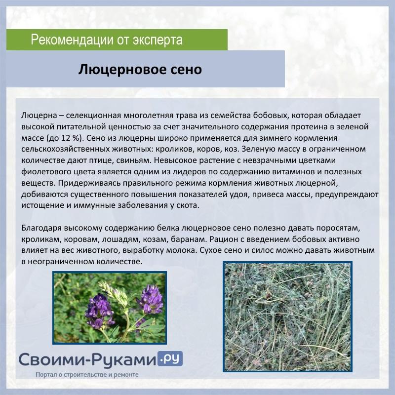 Люцерновое сено