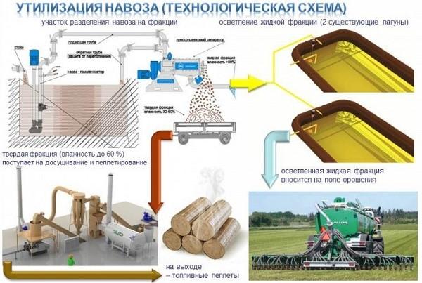 Использование новых технологий позволяет в разы повысить экономическую эффективность переработки навоза