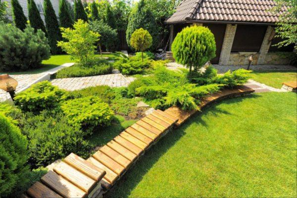 Можжевельники являются неотъемлемым элементом садового ландшафта