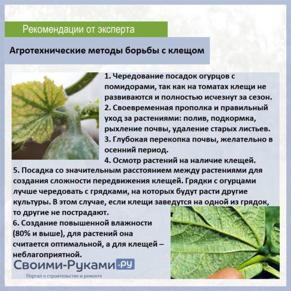 Агротехнические методы борьбы с вредителем