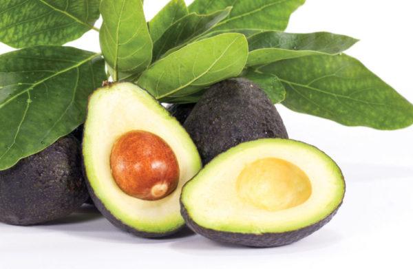 Здоровый плод