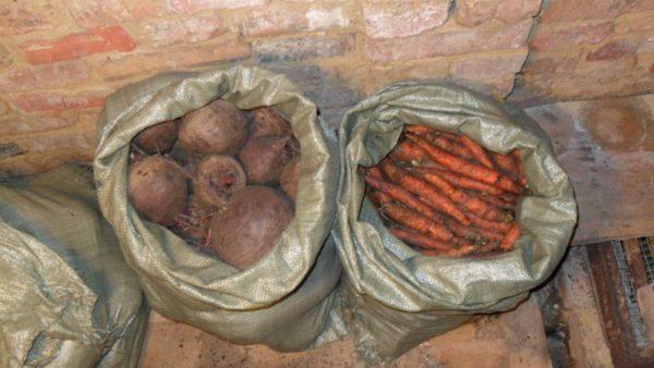 Пример хранения овощей