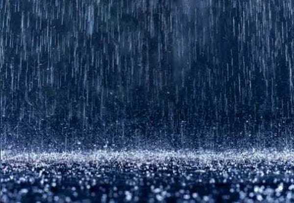 Распространению болезни способствует дождь