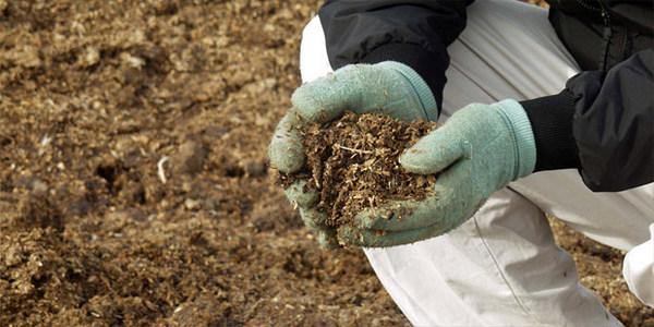 Используют и органические удобрения