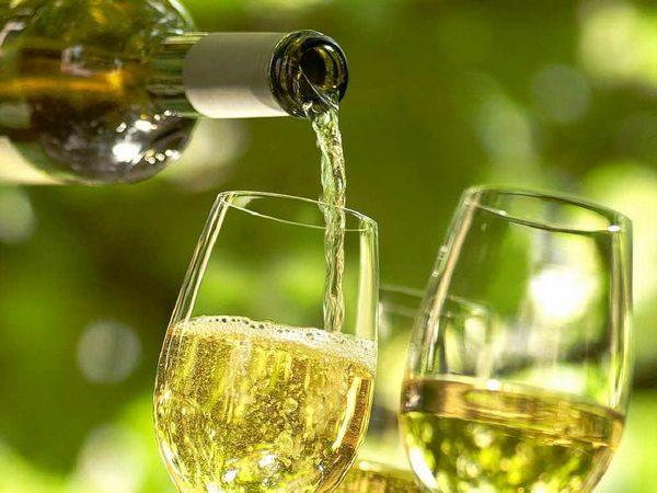 Из такого сорта винограда готовят белое вино