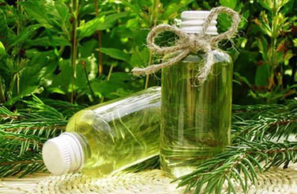 Травяные отвары усиливают действие дрожжевых подкормок