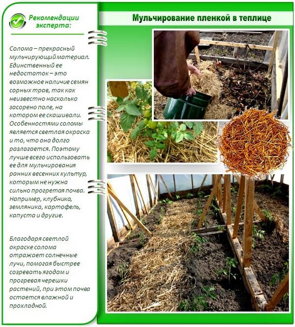 Можно разместить под почвой солому или листья