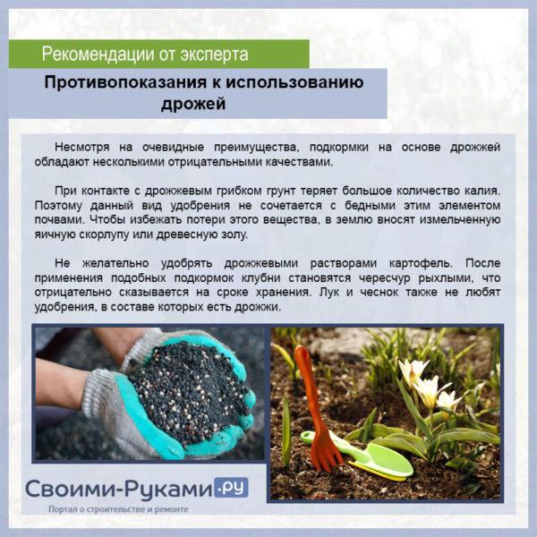 Дрожжевая подкормка для растений: рецепт приготовления