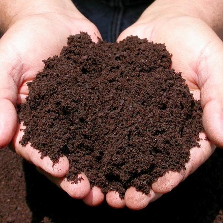 Требования к почве для рассады