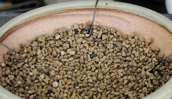 В качестве дренажа можно использовать мелкую гальку или керамзит