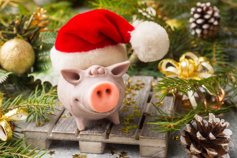 Свинья-копилка может стать лучшим подарком на этот Новый Год