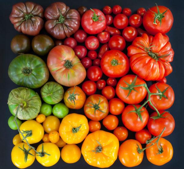 На вкусовые и внешние качества плодов ориентироваться не стоит: в данном вопросе они не играют большой роли