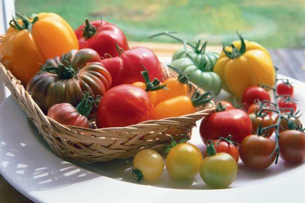 Разбег форм, цветов, вкусов, размеров и назначений томатов очень высок