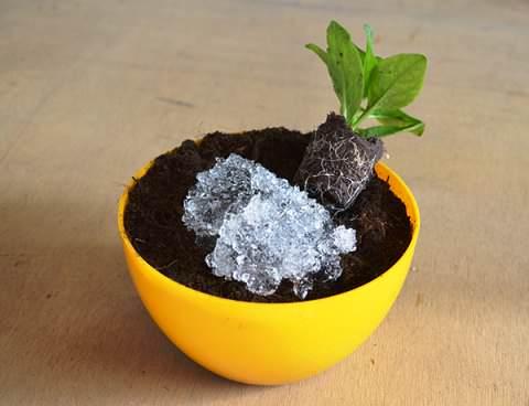 Гидрогель для растений смешивают с почвой