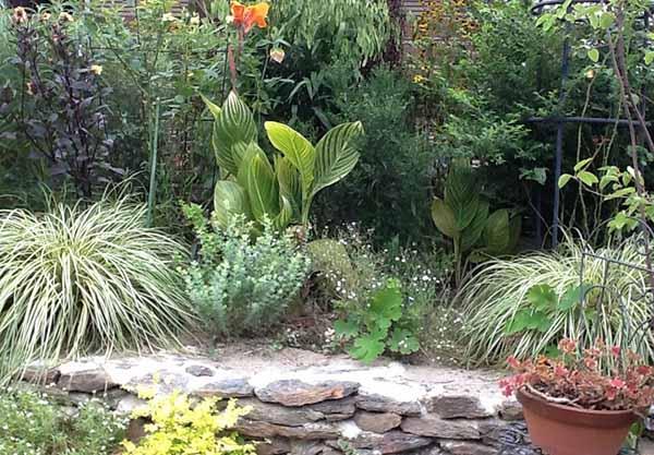 красивый двор частного дома фото сада