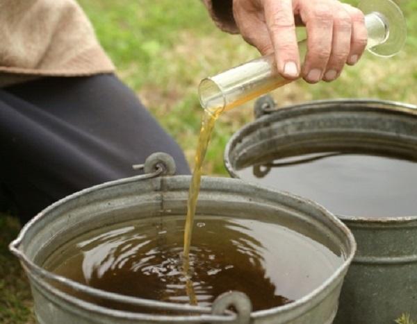 Качественный раствор «Байкал ЭМ1» должен иметь приятный запах и желтовато-коричневый медовый цвет
