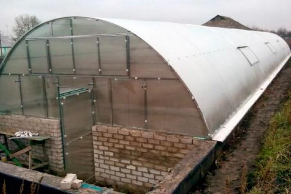 Тоннельные (арочные) подземные теплицы имеют преимущество в том, что свет солнца будет падать на растения со всех сторон