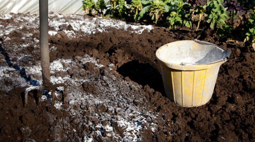 Раскисление почвы известью